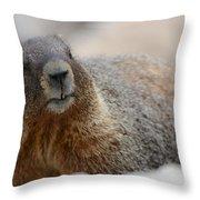 Merry Marmot Throw Pillow