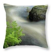 Mersey River Nova Scotia Canada Throw Pillow