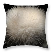 Mesolite And Fluoroapophyllite Throw Pillow