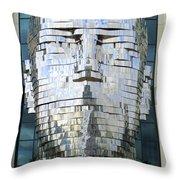 Metalmorphosis Framed Throw Pillow by Randall Weidner