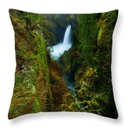 Metlako Falls Throw Pillow