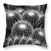 Mexican Golden Barrel Cacti Throw Pillow