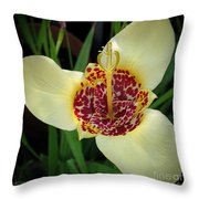 Mexican Shell Flower Throw Pillow
