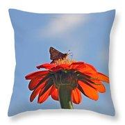 Mexican Sunflower Hat Dance Throw Pillow