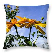 Mexican Sunflower Throw Pillow