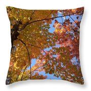 Mezmerizing Mix Of Color And Texture Throw Pillow
