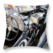 Mg Tc In Paddock Throw Pillow