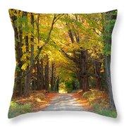 Michigan Back Roads Throw Pillow