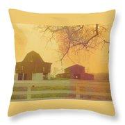 Michigan Barns Throw Pillow