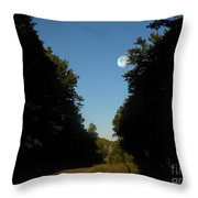 Michigan Country Road Throw Pillow
