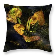 Michigan Fresh Water Ripples Throw Pillow