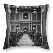 Michigan State Senate  Throw Pillow
