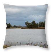 Michigan Wetland Throw Pillow