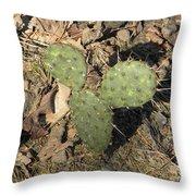 Mickey Mouse Cactus Throw Pillow