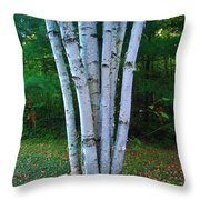 Micro-grove Throw Pillow
