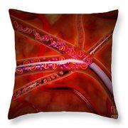 Microscopic View Of Medicine Throw Pillow