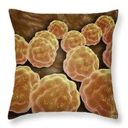 Microscopic View Of Rubella Virus Throw Pillow by Stocktrek Images