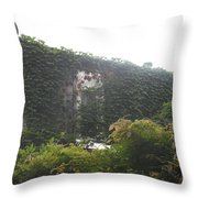 Microwave And Ivy Throw Pillow