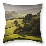 Mid Wales Autumn Landscape Throw Pillow