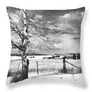 Mid-winter Moonlight Throw Pillow by Theresa Tahara
