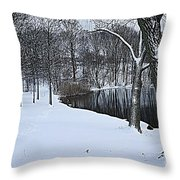 Mid-winter Storm Throw Pillow