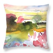 Midday 33 Throw Pillow