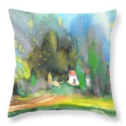 Midday 36 Throw Pillow