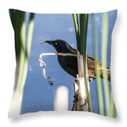 Midday Snack Throw Pillow