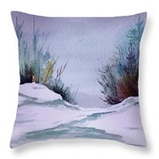 Midday Winter In Maine Throw Pillow