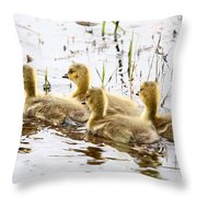 Middle Child By James Figielski Throw Pillow