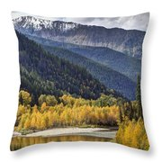 Middle Fork Brillance  Throw Pillow