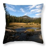 Middle Fork Of The San Joaquin River Throw Pillow
