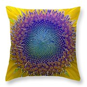 Middle Of Sunflower Close-up Throw Pillow
