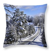 Middle Road Franklin Throw Pillow