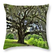 Middleton Place Oak  Throw Pillow
