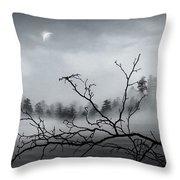 Midnight Beauty Throw Pillow