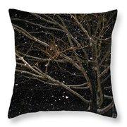 Midnight Snow Throw Pillow
