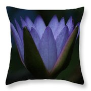 Midnight Water Lily Throw Pillow