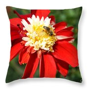 Midsummer Beauty Throw Pillow