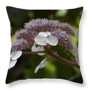 Midsummer Bloom Throw Pillow by Christine Burdine