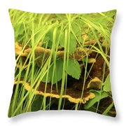 Midway Mountain Morsels 5 Throw Pillow