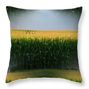 Midwest Gold Throw Pillow