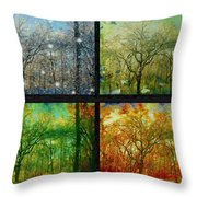 Midwest Seasons Collage Throw Pillow