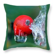Midwinter Meltdown Throw Pillow