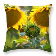 Midwives Throw Pillow