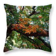 Mighty Fall Oak #1 Throw Pillow