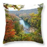 Mighty Mulberry Throw Pillow