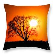 Mighty Oak Sunset Throw Pillow