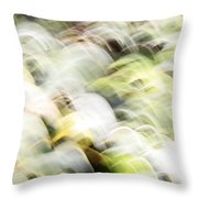 Migratory Birds Throw Pillow