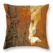 Mile-long Canyon Leads Through 600 Foot Deep Gorge To The Treasury In Petra-jordan Throw Pillow